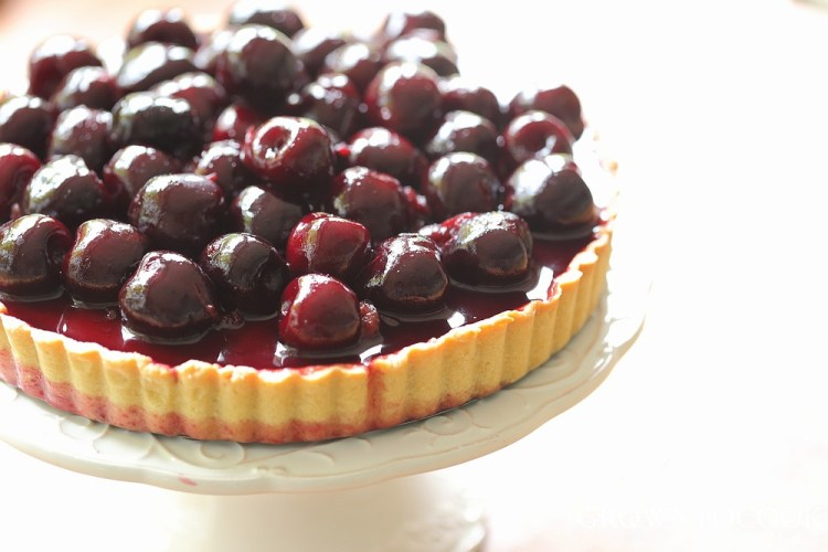 chocolate sesame cream tart with cherries