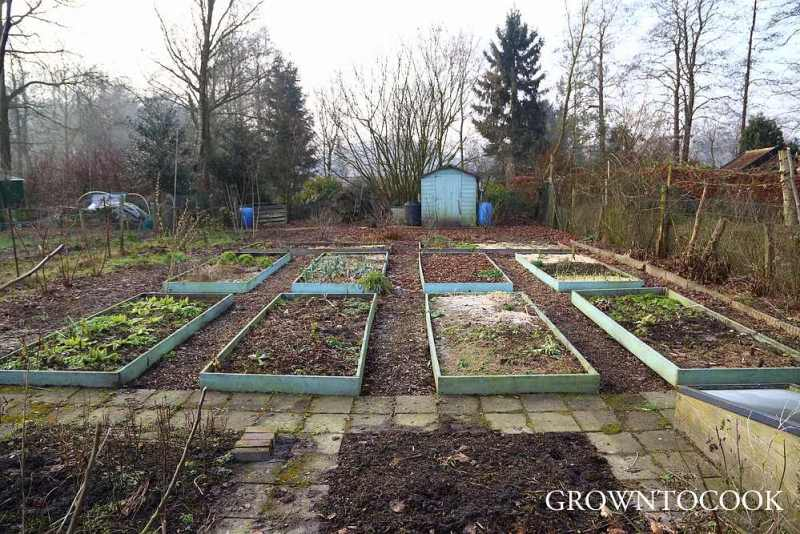 allotment in february