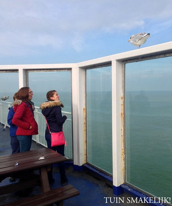 on the ferry to dover