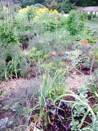 This garden is highly diverse, with herbs, vegetables, and flowers interspersed.