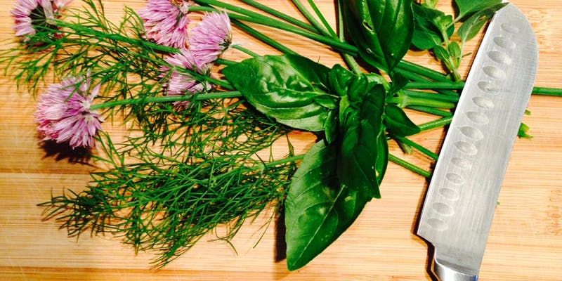 How to Grow and Care for Your Own Chef's Herb Garden