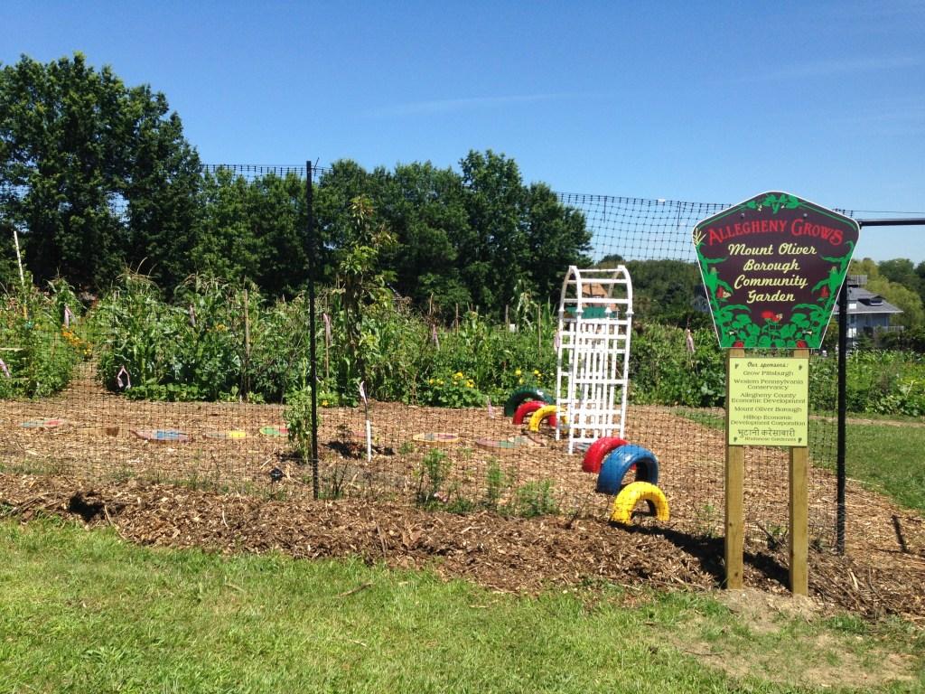 evaluating a garden site - Oliver Garden Survey