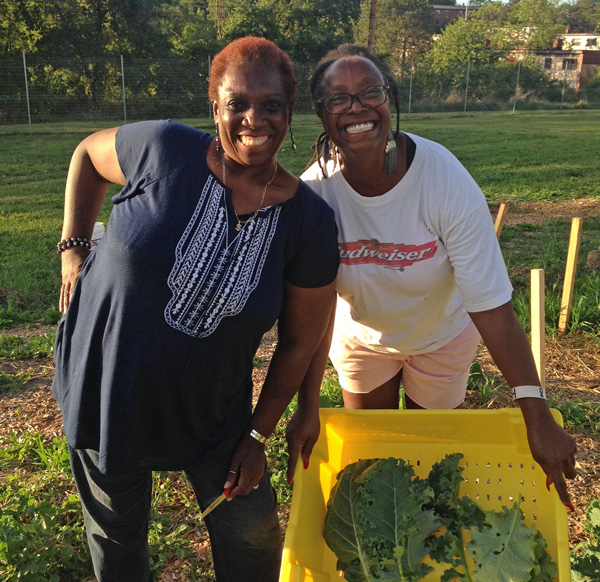 Community Garden Sustainability Fund Applications Open through October 1