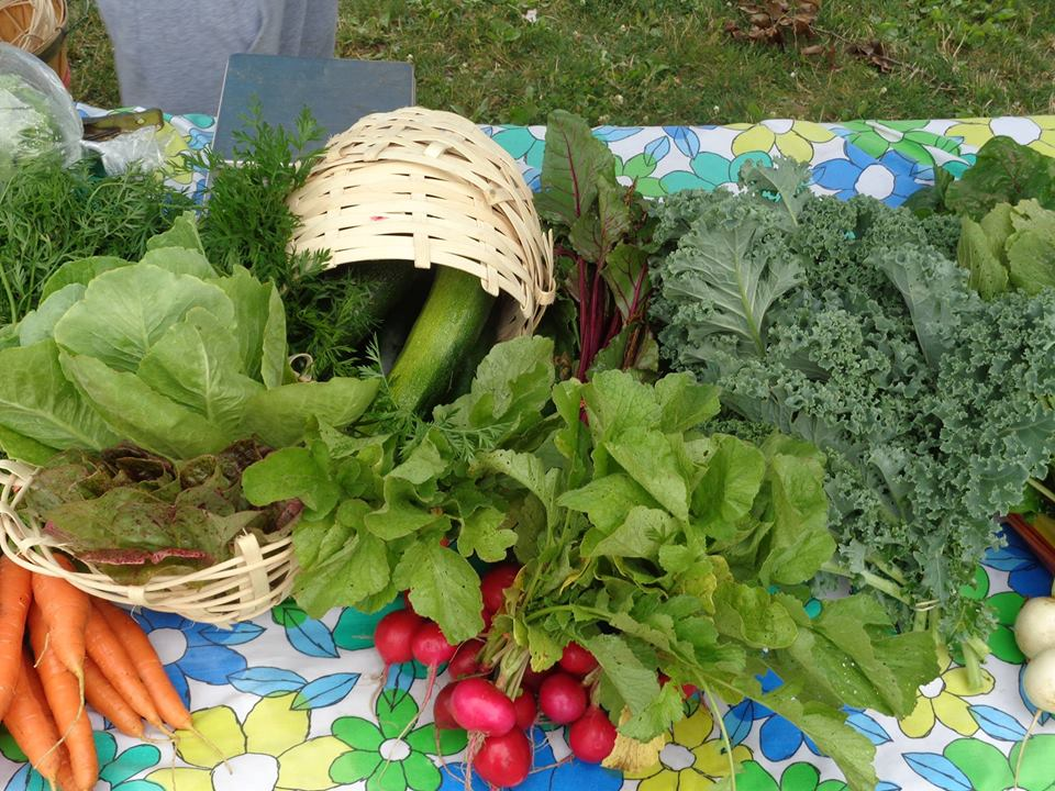 February Funding Sources for Community Gardens