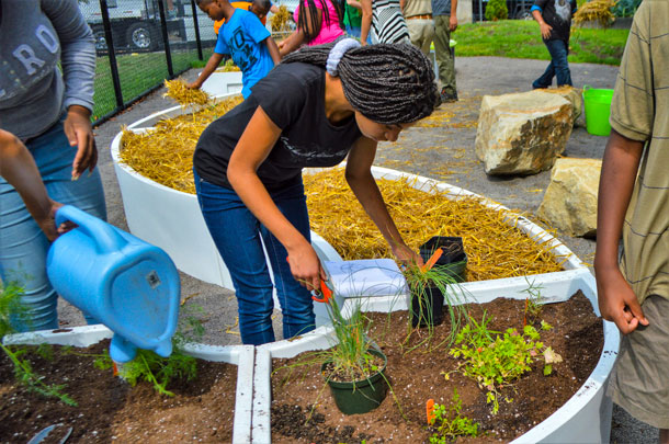 Grow Pittsburgh School Garden Program
