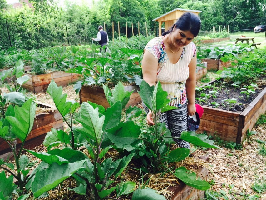 For Immediate Release: Joint Venture Formed to Protect Urban Agricultural Land