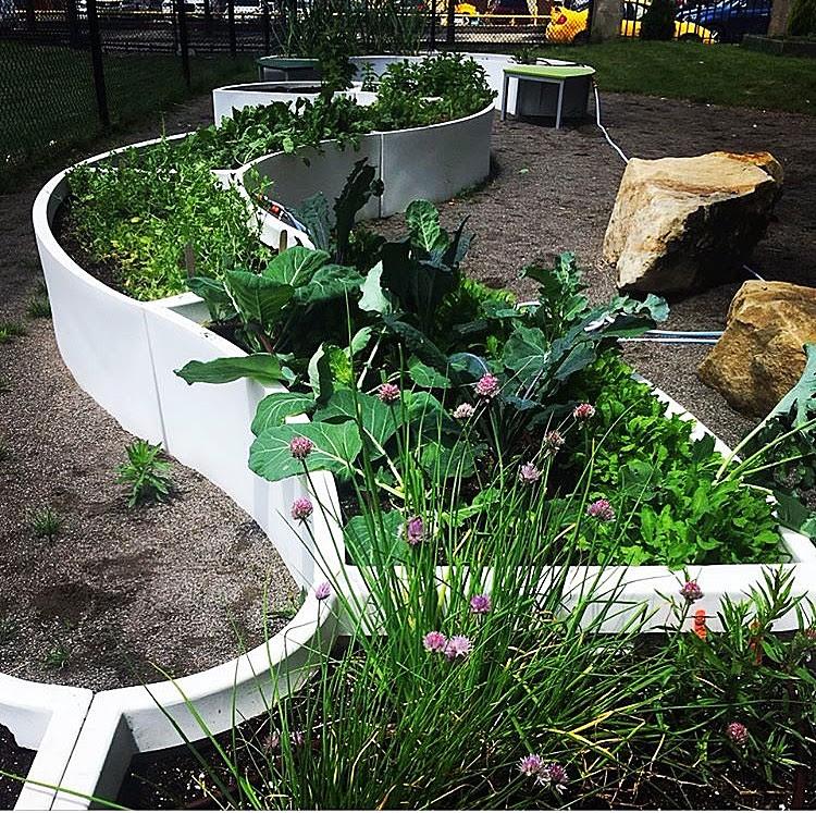 School Gardens Growing in Pittsburgh