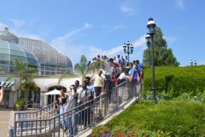 Students on staircase at Phipps Conservatory and Botanical Gardens for the fourth annual Youth Summit