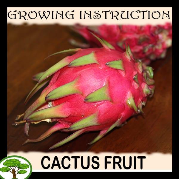Fruit Grow information
