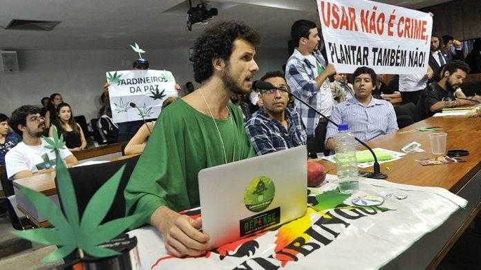 Comissão de direitos humanos do Senado discute o cultivo caseiro da cannabis