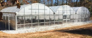 Table Rock team Company greenhouse
