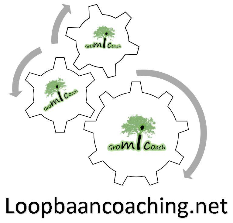 loopbaancoaching.net