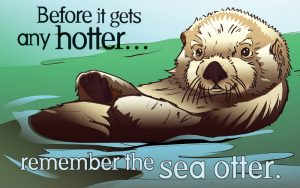 Before it gets hotter..remember the sea otter (on condoms package)