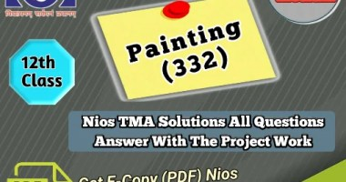 download Nios Painting - 332 Solved Assignment PDF File
