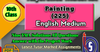 Nios Solved Assignment Painting 225