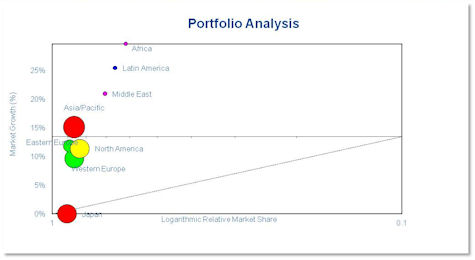BCG Portfolio analysis