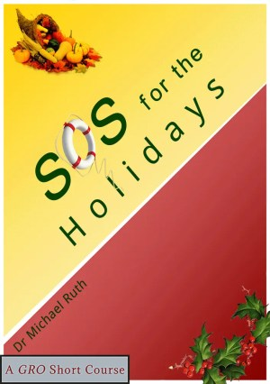 Holiday stress, dealing with the holidays, surviving the holidays, holiday blues