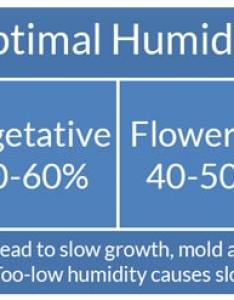 Optimal cannabis humidity levels chart also indoor control for plants grow weed easy rh growweedeasy