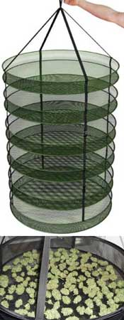 A mesh drying rack can be used for drying buds, but it will tend to dry out buds faster than hanging them upside down by their stems
