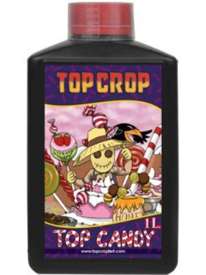 Top Candy Top Crop