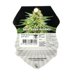 Royal Queen Seeds White Widow Auto 3