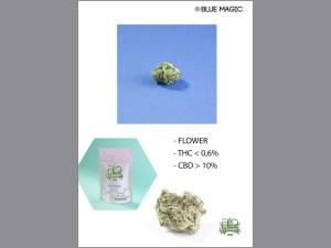 BLUE MAGIC thc 0,6% cbd 10%