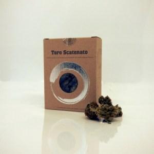 Toro Scatenato Infiorescenza di Canapa Sativa 3gr