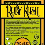 Ruby Kush BusyBeach
