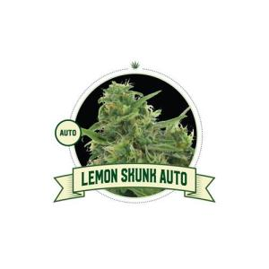 Lemon Skunk Auto City Seeds Bank