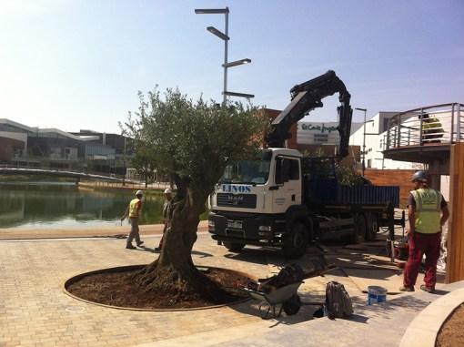 Construcción en Puerto Venecia