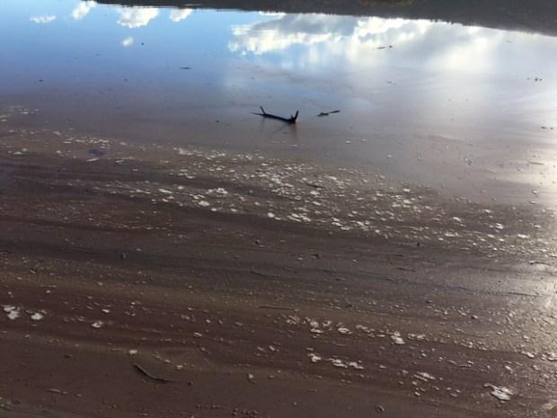 zeleno-jezero-ricice-zagadenje-7