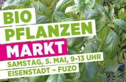 Pflanzenmarkt 2018