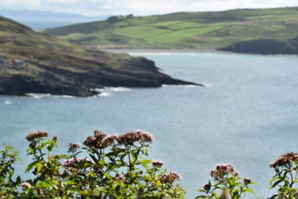 Irlands Süden, Fernwanderwege entlang der Küste