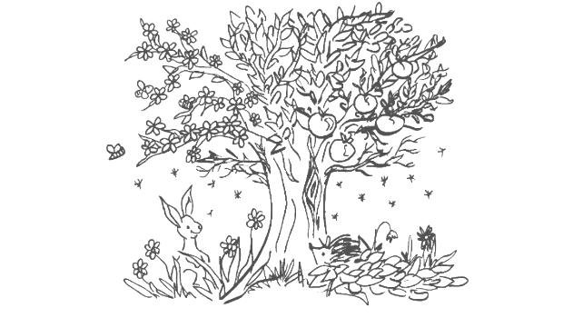 Malvorlage Baum Des Lebens Kinder Ausmalbilder