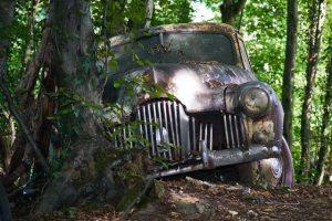 Die schönen Autos und die liebe Umwelt