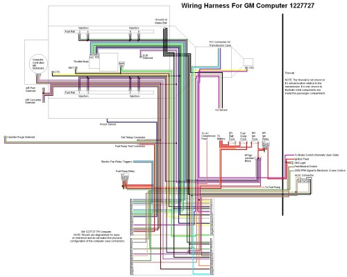 small resolution of diy ls1 wiring harness wiring diagram blogs rh 12 20 2 restaurant freinsheimer hof de ls1