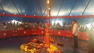 zirkus2019_005