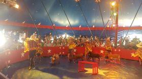 zirkus2019_015