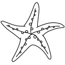 Ausmalbild in der Grundschule - Q-S - Nomengrafiken zum