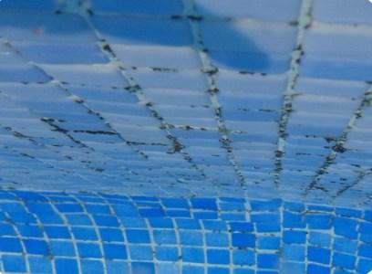 Quitar algas negras de la piscina