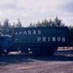 Grupo Primos – Antigas Instalações