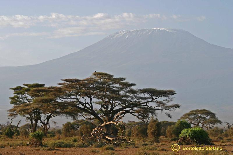 Immagini del Kenya