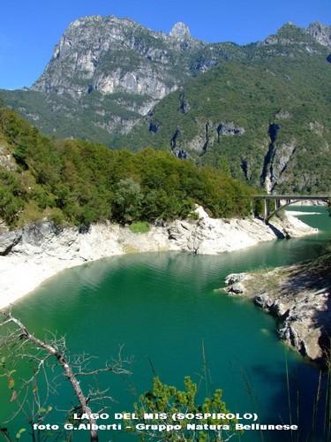 La Provincia di Belluno  Gruppo Natura Bellunese