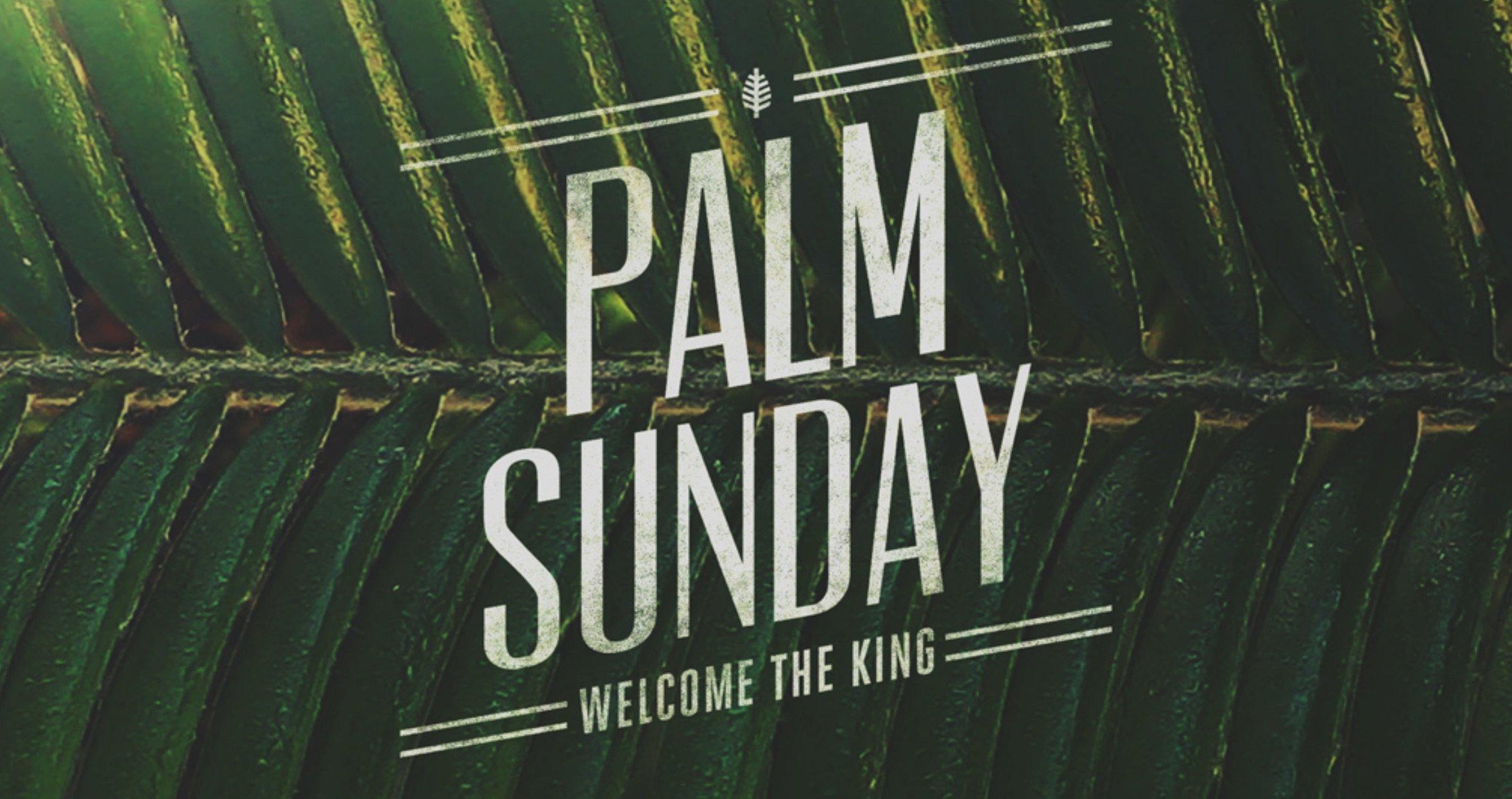 Palm Sunday Prophecies - Good Shepherd Lutheran Church of ... - photo#23