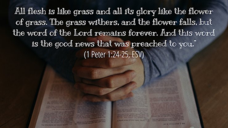 """All flesh is like grass and all its glory like the flower of grass. The grass withers, and the flower falls, but the word of the Lord remains forever."" And this word is the good news that was preached to you."" (1 Peter 1:24–25, ESV)"