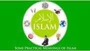 Islam Means - GSalam.Net