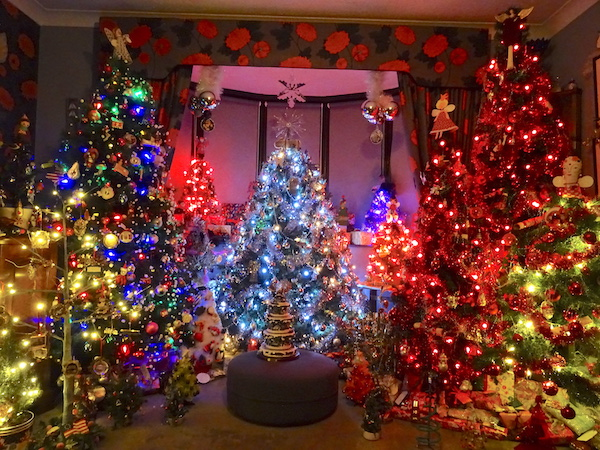 Feeling Festive Seaford Local To Show Off Amazing Christmas Trees For Tv Programme Gscene Gay Magazine What S On In Gay Lgbt Brighton
