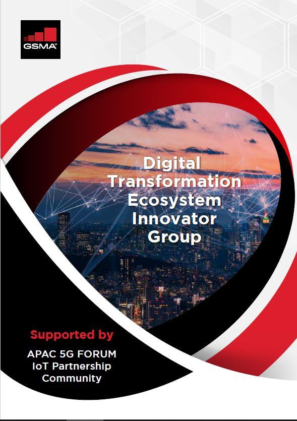 Digital Transformation Ecosystem Innovator Group (DXEIG) image