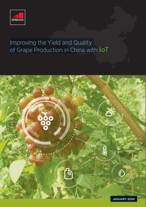 Report: Improving the Yield and Quality of Grape Production in China with IoT image