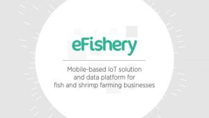 GSMA Ecosystem Accelerator Innovation Fund - eFishery
